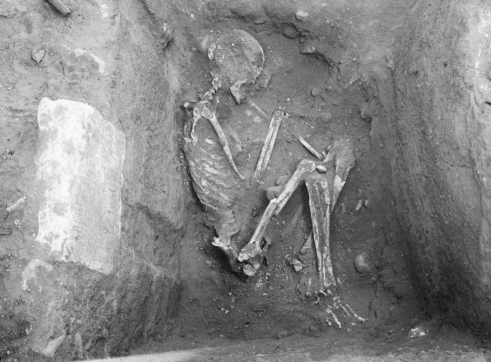 Western Cemetery: Site: Giza; View: G 2044