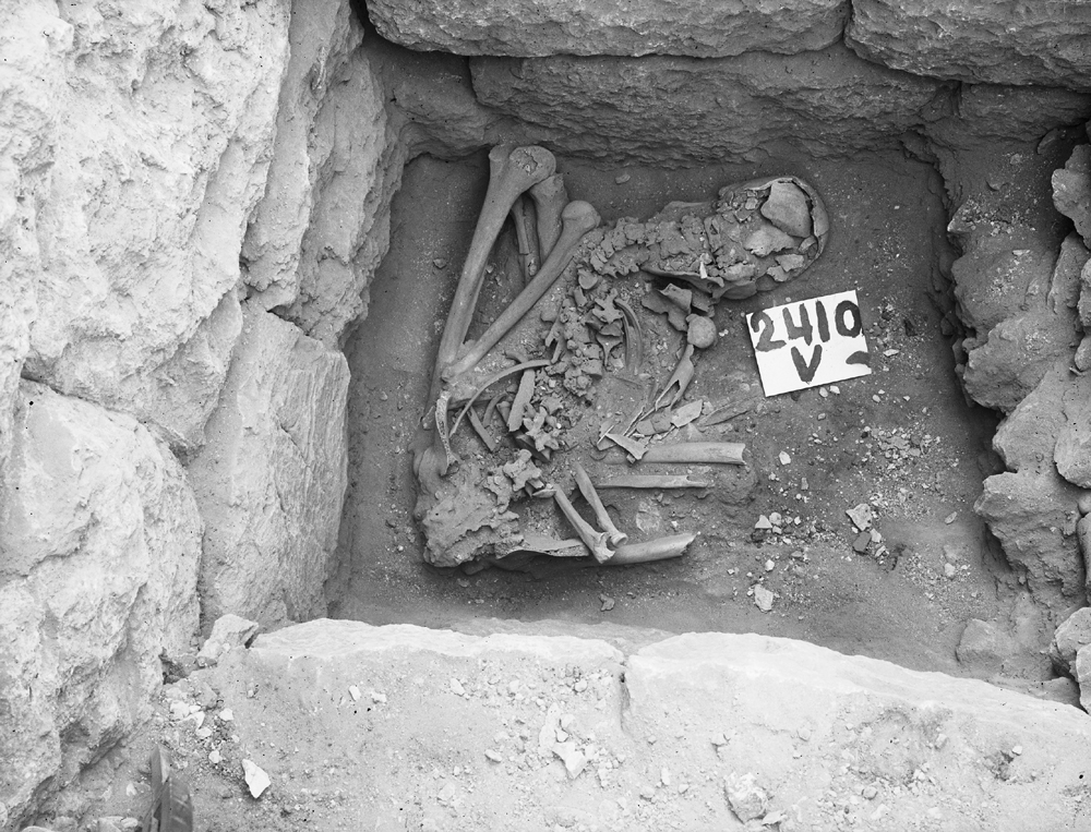 Western Cemetery: Site: Giza; View: G 2410