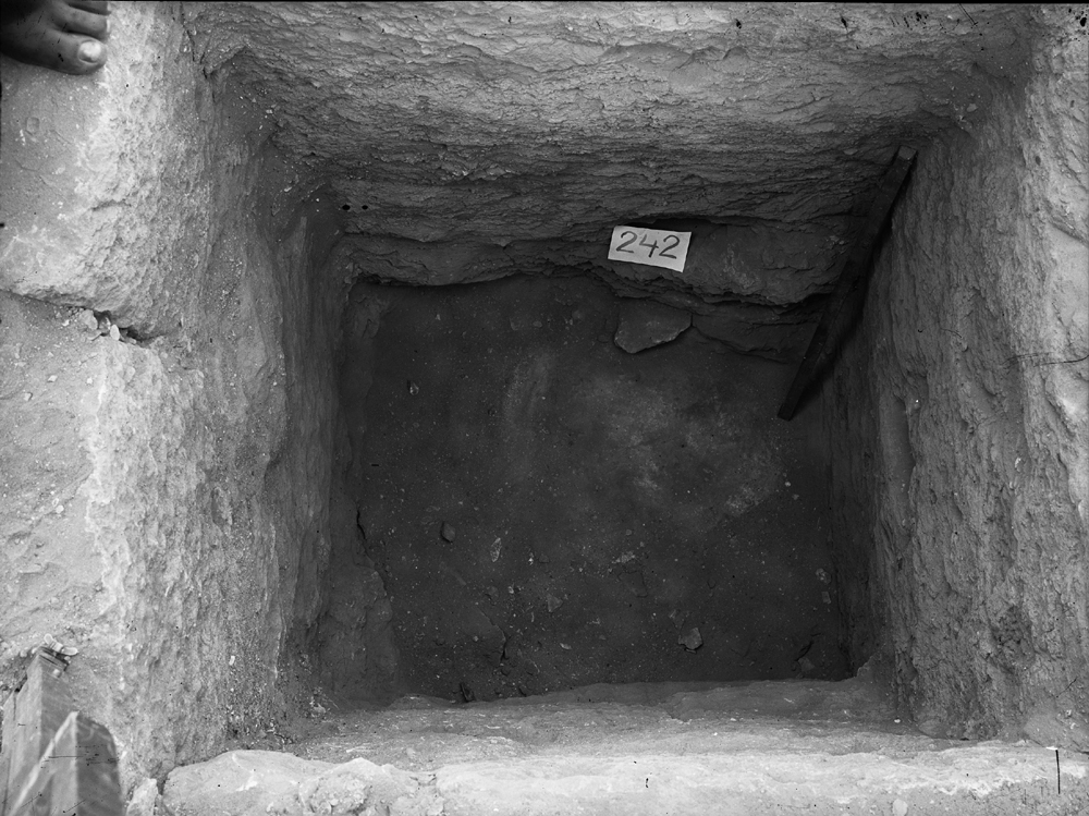 Western Cemetery: Site: Giza; View: G 2135' = G 2134a