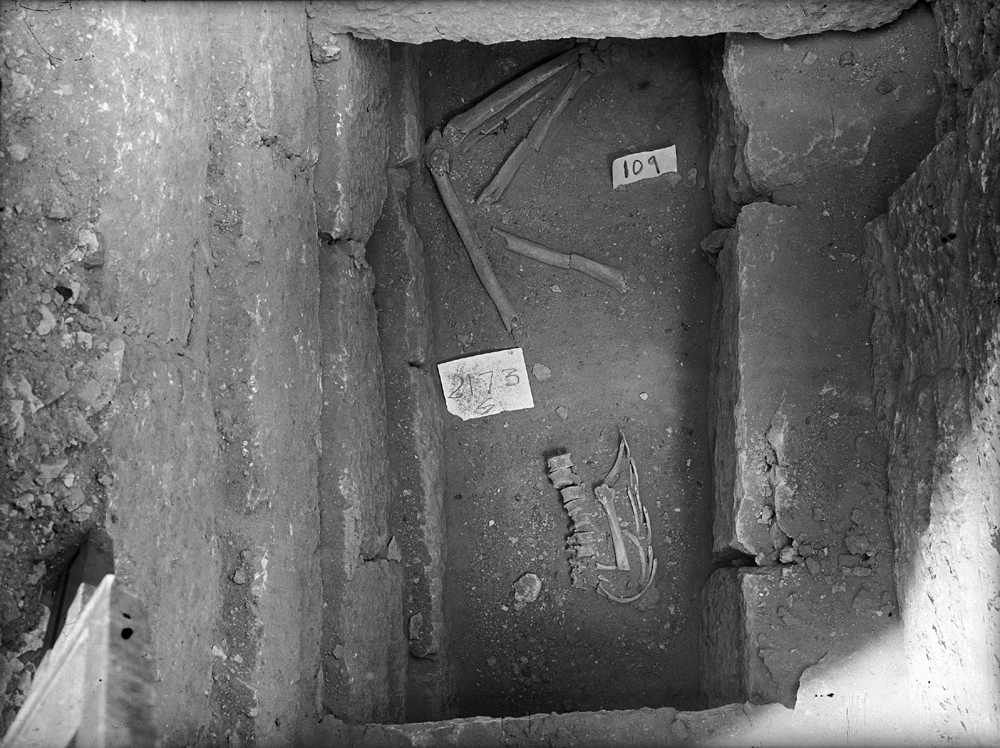 Western Cemetery: Site: Giza; View: G 2176
