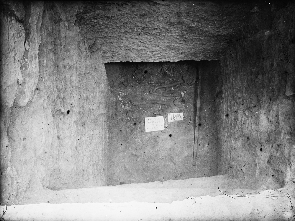 Western Cemetery: Site: Giza; View: G 2183