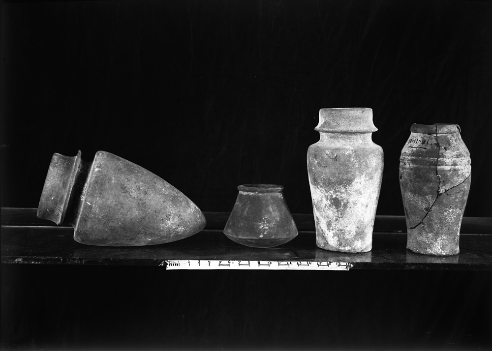 Object(s) photograph: Site: Giza; view: G 4440