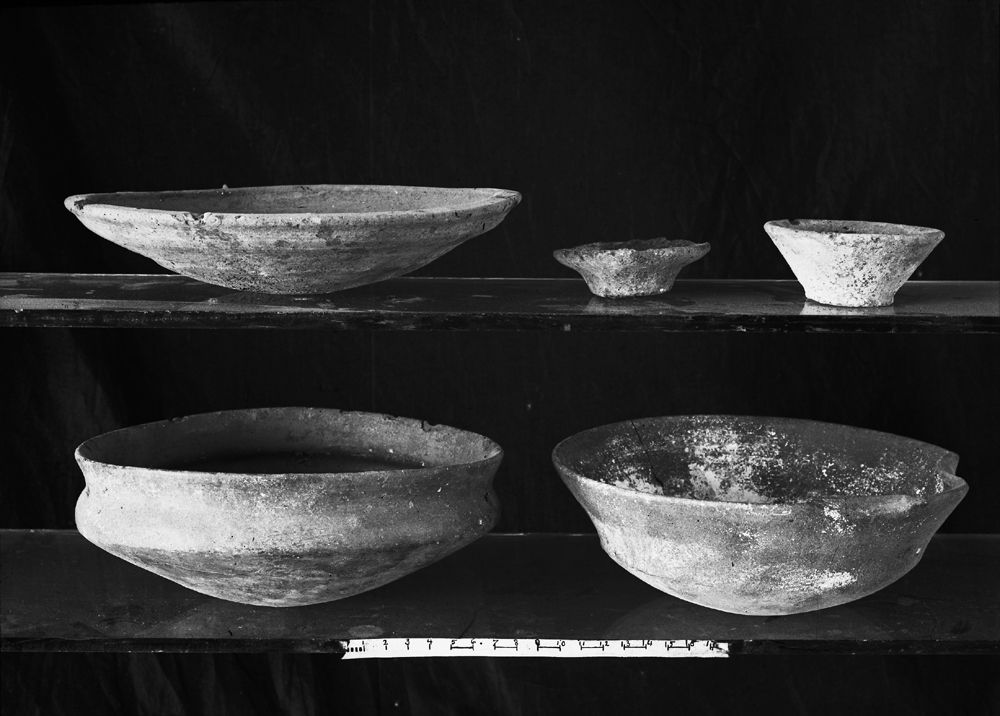 Object(s) photograph: Site: Giza; view: G 1110
