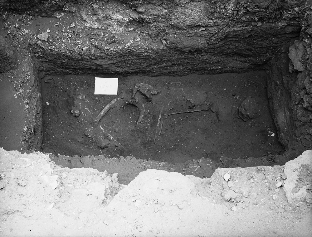 Western Cemetery: Site: Giza; View: G 4543