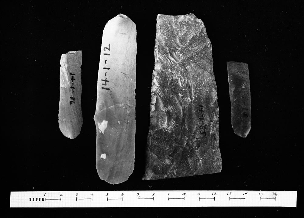 Object(s) photograph: Site: Giza; view: G 4341, G 4630