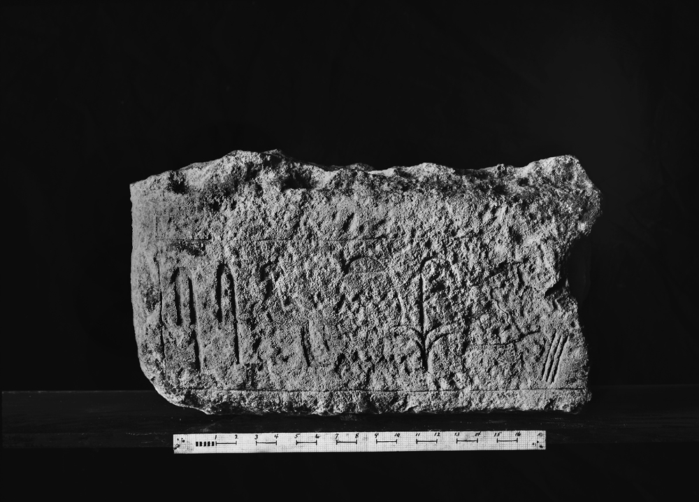 Object(s) photograph: Site: Giza; view: G 4521