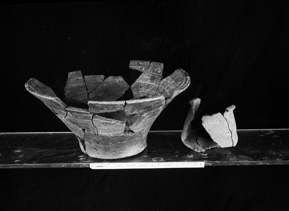 Object(s) photograph: Site: Giza; view: G 4620