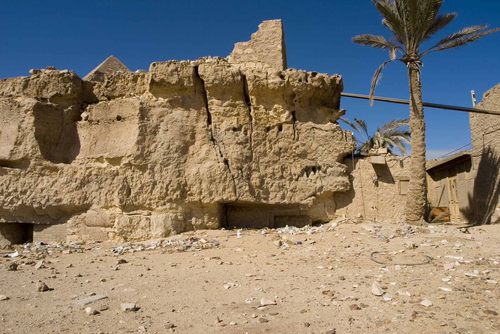 Central Field (Hassan): Site: Giza; View: G 8158