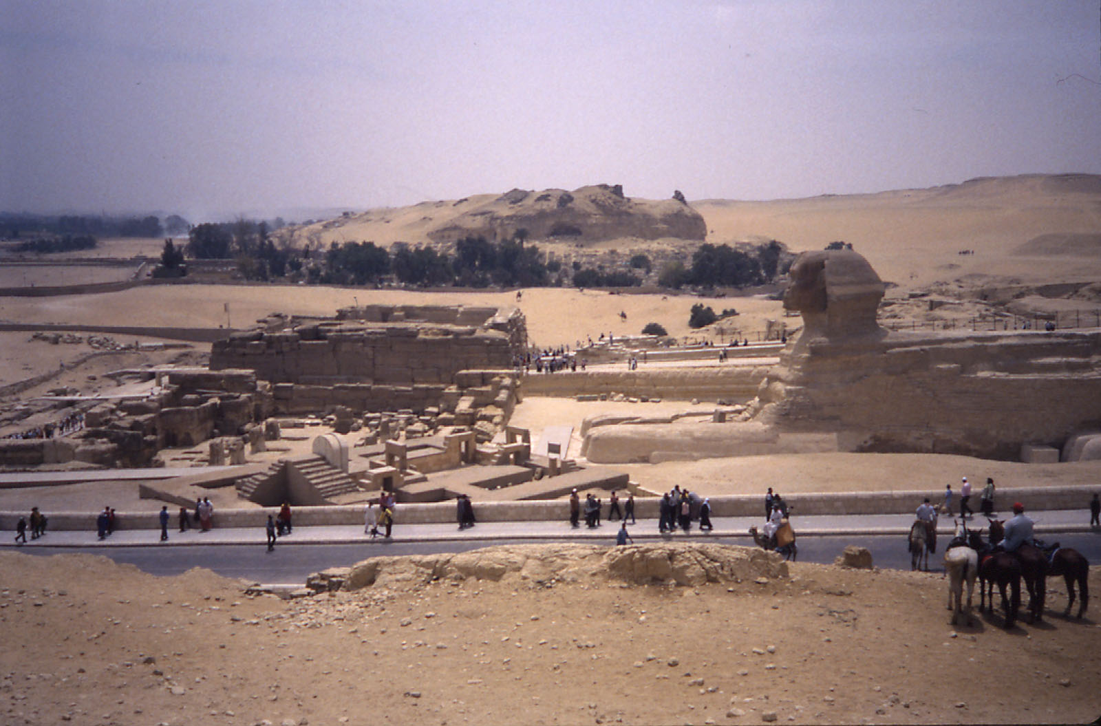 Sphinx Complex: Site: Giza; View: Sphinx complex, Khafre valley temple