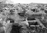 Western Cemetery: Site: Giza; View: S 2312/2400, S 2337/2349, S 2318/2321, S 2310/2328