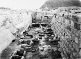 Western Cemetery: Site: Giza; View: G 2155, G 2135, Nefer III, Qedfy (G 2135a), G 4761