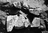Object(s) photograph: Site: Giza; view: Mastaba IV