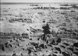 Eastern Cemetery: Site: Giza; View: street G 7000, G 7131, bin 7, bin 8, bin 9, bin 10, bin 28, bin 29, bin 30, bin 31, bin 32, bin 33, bin 34, bin 36, bin 40, bin 41, bin 42, bin 47, bin 48, bin 50, G 7110-7120, G 7130-7140, avenue G 2