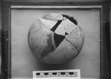 Object(s) photograph: Site: Giza; view: G 7146