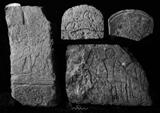 Object(s) photograph: Site: Giza; view: G 7670, G 7000 SE 167, G 7000 SE 194, G 7759