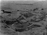 Wadi Cemetery (Reisner; north of W. Cem): Site: Giza; View: GW 31, GW 32, GW 33, GW 34, GW 35, GW 36, GW 38