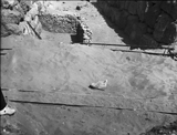Western Cemetery: Site: Giza; View: G 4620, G 4530, G 4520