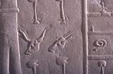 Object(s) photograph: Site: Giza; view: G 1235
